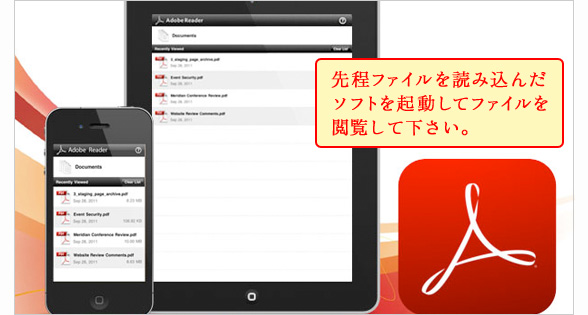 iPad iPhone 再生